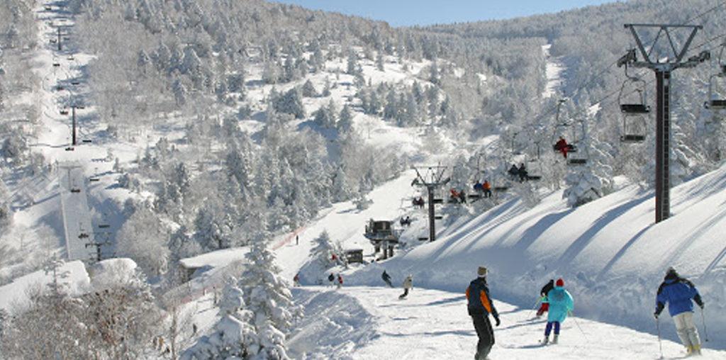 Ryuoo Ski Park<br>(龍王滑雪公園)